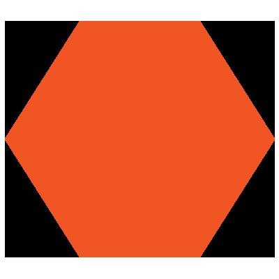 LEAD Professional Development Hexagon Large